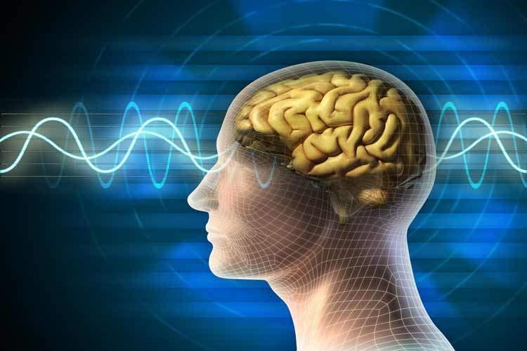 مغز انسان به اینترنت ابررایانه ها متصل می شود