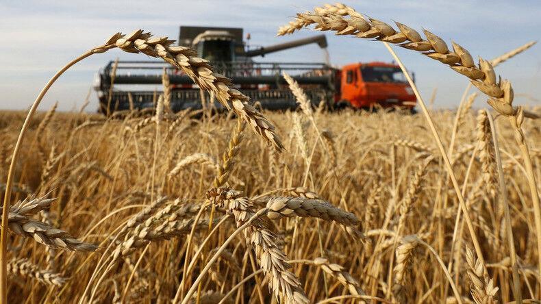تاثیر کرونا بر چرخه غذایی دنیا و آسیای مرکزی